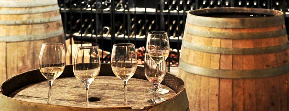 TX Hill Country Wine Tours